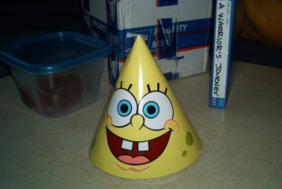 The world's most absorbant party hat.